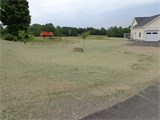 Grass Seeds & Hay